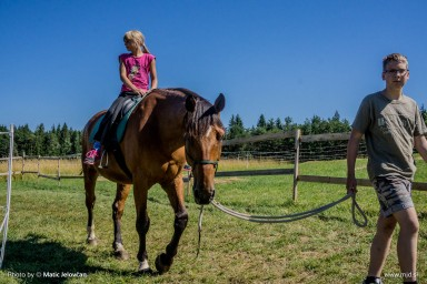 20150711 DSC02123 384x256 - HorseCamp 2015 — 2. teden