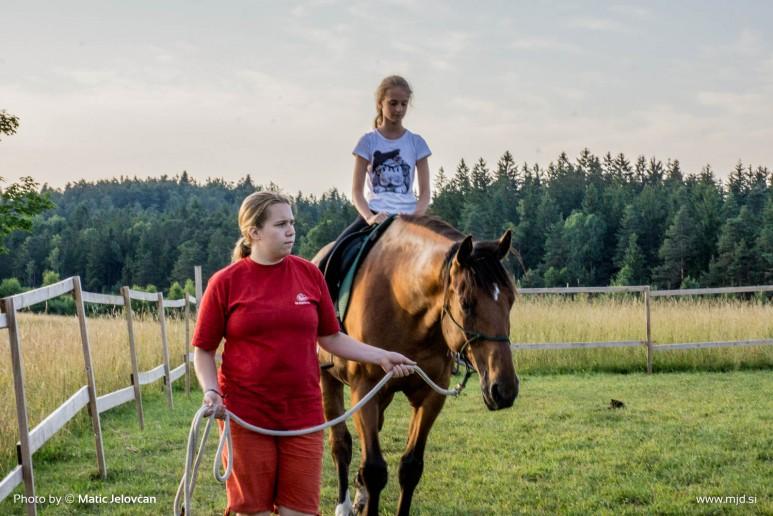 20150712 DSC02424 773x516 - HorseCamp 2015 — 3. teden