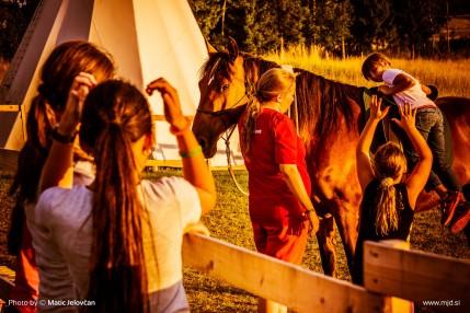 20150712 DSC02483 429x286 - HorseCamp 2015 — 3. teden