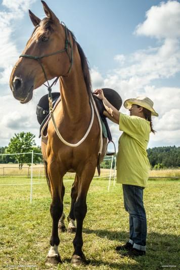 20150713 DSC02600 356x534 - HorseCamp 2015 — 3. teden