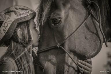 20150719 DSC03688 384x256 - HorseCamp 2015 — 4. teden