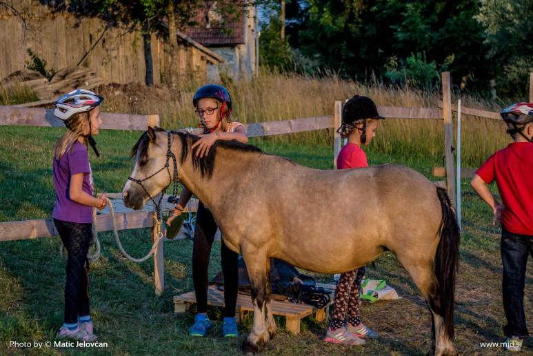 20150719 DSC03697 773x516 - HorseCamp 2015 — 4. teden