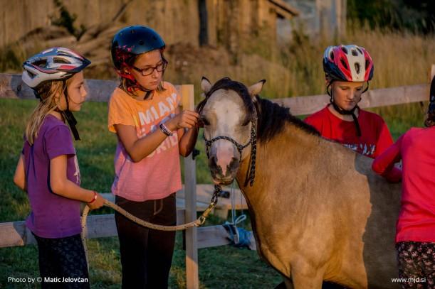 20150719 DSC03700 611x407 - HorseCamp 2015 — 4. teden