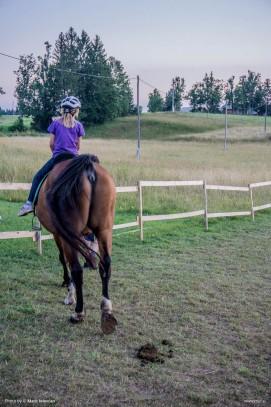 20150719 DSC03718 271x407 - HorseCamp 2015 — 4. teden