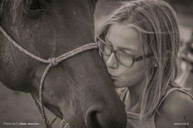 20150720 DSC03836 384x256 - HorseCamp 2015 — 4. teden