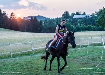 20150720 DSC03851 367x262 - HorseCamp 2015 — 4. teden