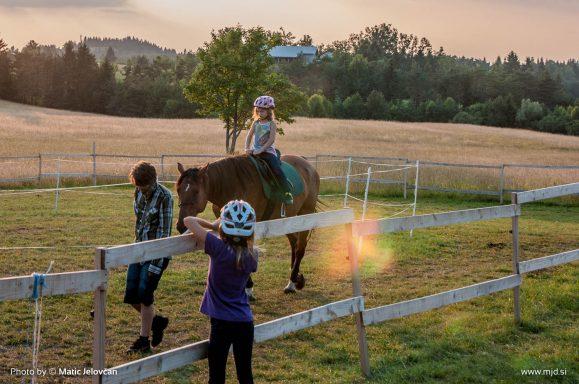 20150720  DSC1031 579x384 - HorseCamp 2015 — 4. teden