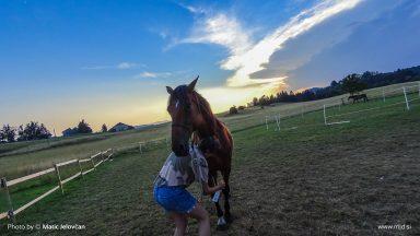 20150721 DSC00087 384x216 - HorseCamp 2015 — 4. teden
