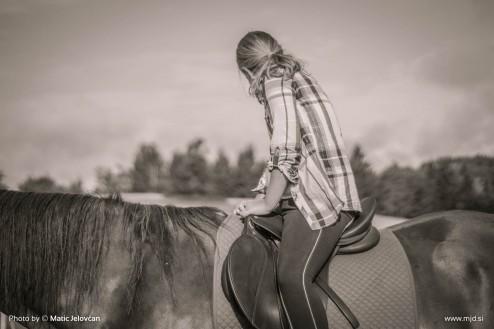 20150818 DSC06511 494x329 - HorseCamp 2015 — 6. teden