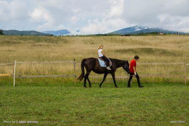 20150818 DSC06706 384x256 - HorseCamp 2015 — 6. teden