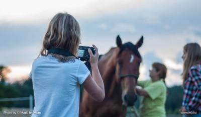 20150818  DSC1604 400x232 - HorseCamp 2015 — 6. teden