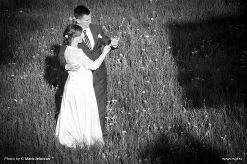 20160416 DSC08074 494x329 - My cousin got married