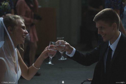 20160708 DSC04165 494x330 - Josiah and Becca got married