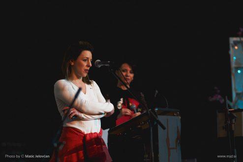 mar 04 2017 13 21 00 DSC07653 494x330 - Ženska konferenca 2017, Ljubljana