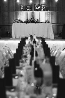 2017 09 16 13.30.48DSC03138 Web 209x314 - Miha & Elizabeth's Wedding — Photography