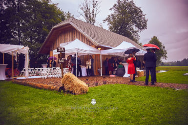 2017 09 16 14.18.39 DSC8532 Web 385x256 - Miha & Elizabeth's Wedding — Photography
