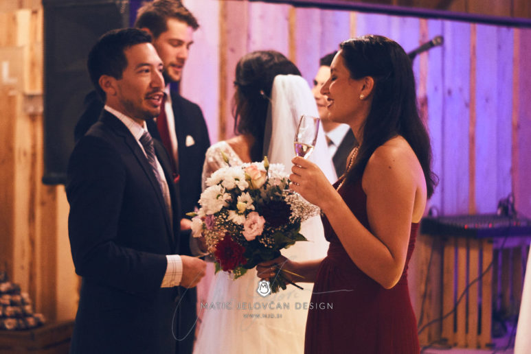 2017 09 16 15.09.58DSC03492 Web 773x516 - Miha & Elizabeth's Wedding — Photography