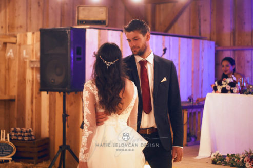 2017 09 16 17.34.00DSC03949 Web 493x329 - Miha & Elizabeth's Wedding — Photography
