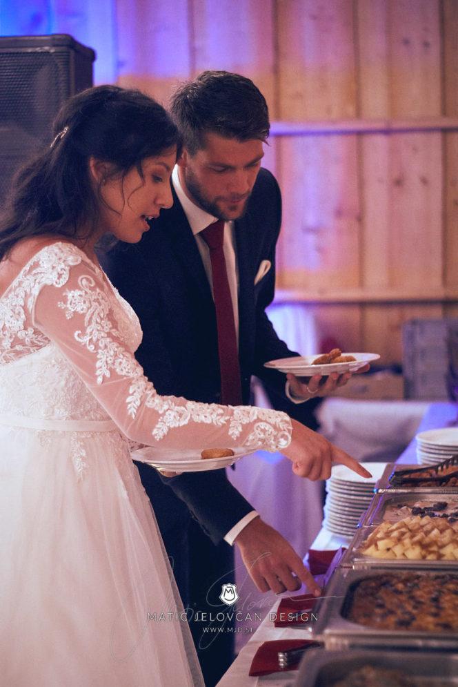 2017 09 16 17.38.11DSC04046 Web 664x995 - Miha & Elizabeth's Wedding — Photography