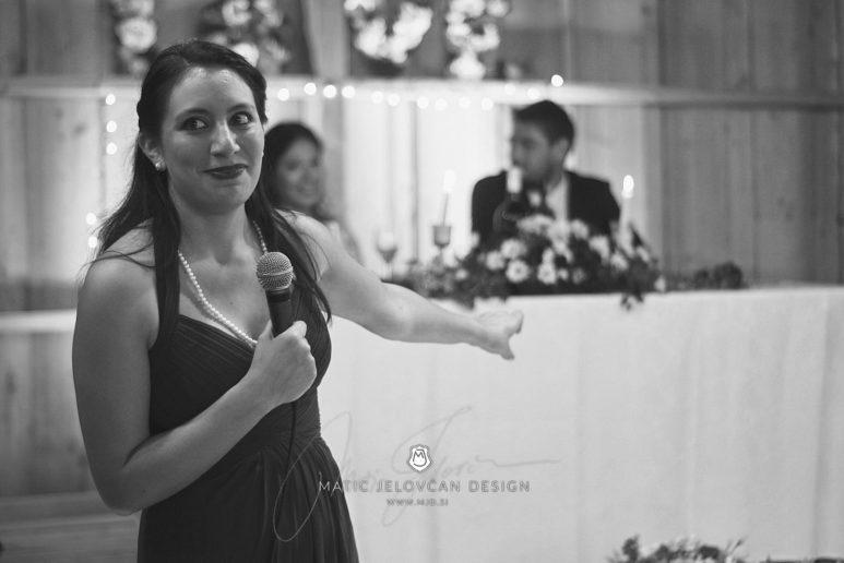 2017 09 16 18.41.36DSC04141 Web 773x516 - Miha & Elizabeth's Wedding — Photography