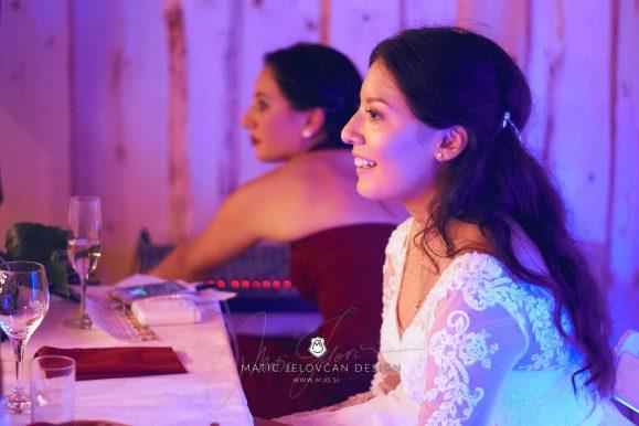 2017 09 16 18.48.57DSC04184 Web 579x386 - Miha & Elizabeth's Wedding — Photography