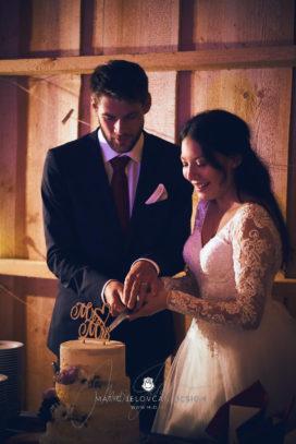 2017 09 16 20.14.36DSC05089 Web 272x407 - Miha & Elizabeth's Wedding — Photography