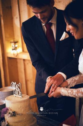 2017 09 16 20.14.52DSC05095 Web 271x407 - Miha & Elizabeth's Wedding — Photography