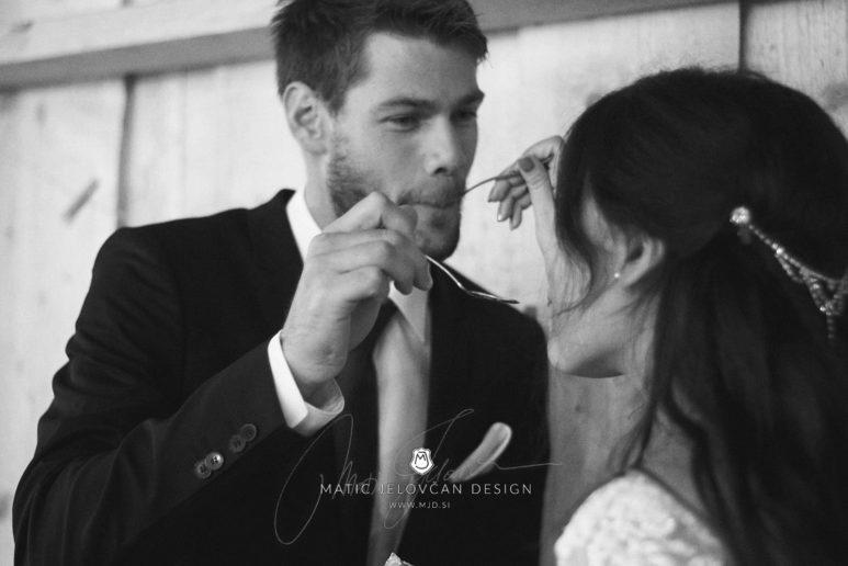 2017 09 16 20.16.33DSC05132 Web 773x516 - Miha & Elizabeth's Wedding — Photography