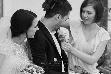 2017 09 23 14.01.41DSC05932 Web 385x256 - Ana and Morgan's Wedding Photography