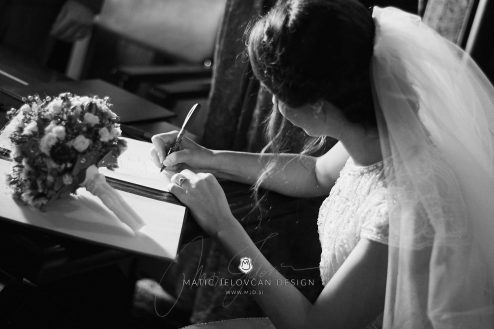 2017 09 23 14.21.47DSC06028 Web 494x329 - Ana and Morgan's Wedding Photography