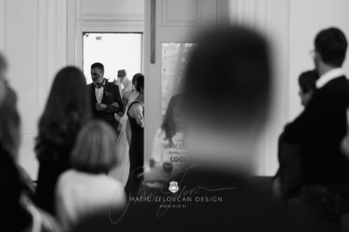 2017 09 23 15.05.37DSC06136 Web 494x329 - Ana and Morgan's Wedding Photography