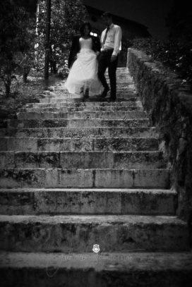 2017 09 29 19.20.38DSC08738 Web 272x407 - Post-Wedding Photography
