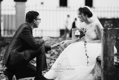 2017 10 07 17.34.55DSC00992 0 Web wm 493x329 - Laura & Paul's International Wedding