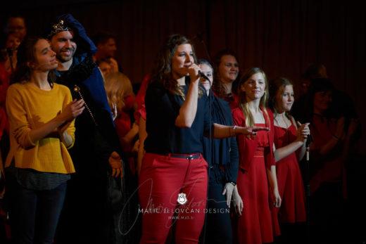 2017 10 29 22.00.41DSC09950 0 WebWM 520x347 - Gift of the Heart 2017, Ljubljana