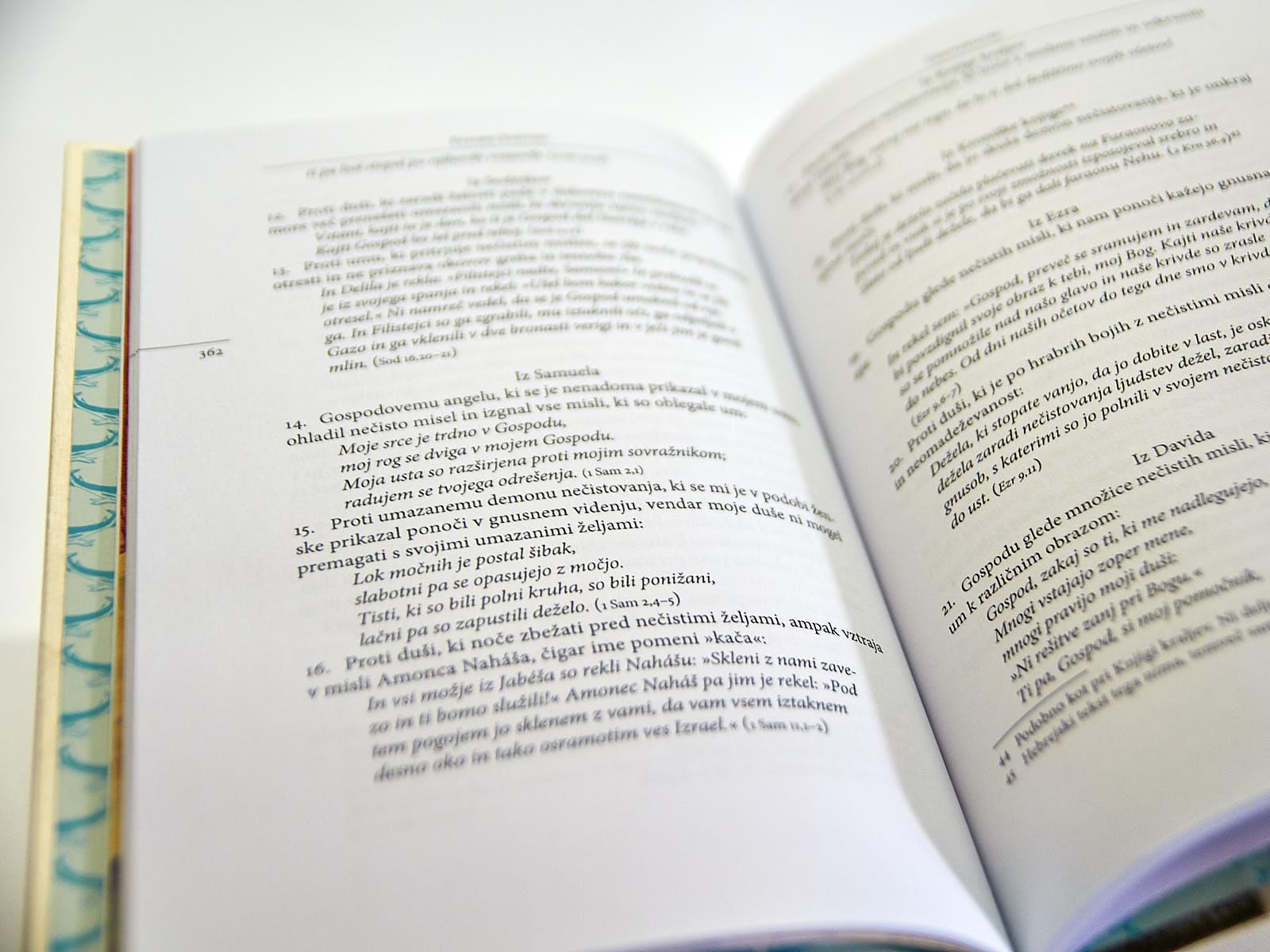 DSC2576 - Lesena knjiga