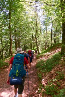 2021 06 25 13.19.02 DizMensR web 271x407 - Men's retreat in the wilderness with DiŽ