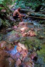 2021 06 26 10.09.04 DizMensR web 153x229 - Men's retreat in the wilderness with DiŽ