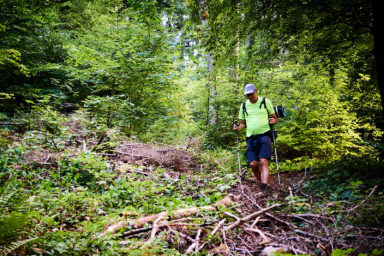 2021 06 26 16.14.38 DizMensR web 384x256 - Men's retreat in the wilderness with DiŽ