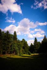 2021 06 26 17.07.58 DizMensR web 153x229 - Men's retreat in the wilderness with DiŽ