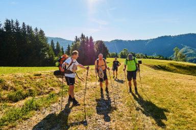 2021 06 27 08.11.57 DizMensR web 384x256 - Men's retreat in the wilderness with DiŽ