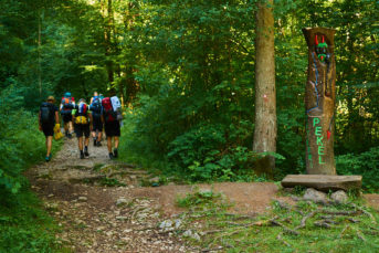 2021 06 28 08.26.00 DizMensR web 343x229 - Men's retreat in the wilderness with DiŽ