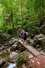 2021 06 28 08.36.01 DizMensR web 153x229 - Men's retreat in the wilderness with DiŽ