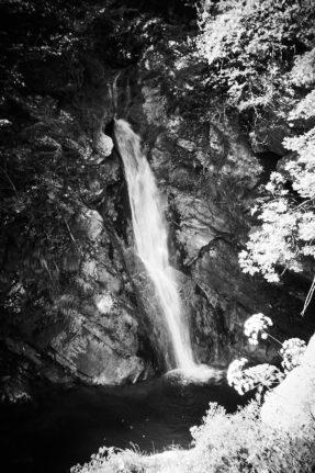 2021 06 28 08.49.07 DizMensR web 287x431 - Men's retreat in the wilderness with DiŽ